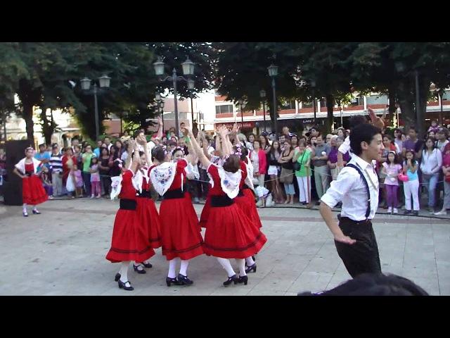 Baile Tradicional Aleman, Valdivia. Bierfest 2013