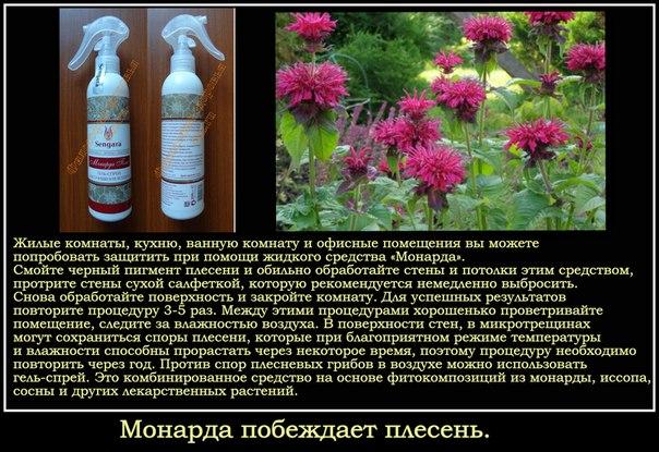 Лечение ломких ногтей народными средствами