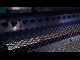 Пресс-станок производство просечно-вытяжной сетки ЦПВС (просечная сетка)
