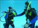 PADI Open Water Diver Глава 4