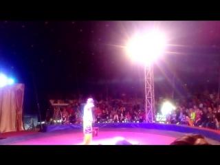 цирк Шапито 9