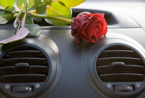 Что делать чтобы в машине не воняло
