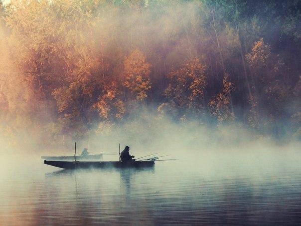 фото приколы про рыбалку бесплатно