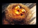 Сказка Курица несущая золотые яйца