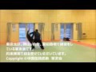 八卦掌 中国伝統武術 掌友会 magui bagua 約束練習動画