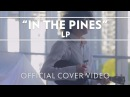 LP In The Pines Leadbelly Ukulele Cover Live