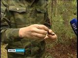 Обнаружен солдат с медальоном на 9-м км трассы Петрозаводск- Лососинное