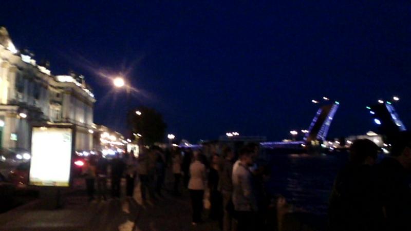 Дворцовая набережная, Дворцовый мост.