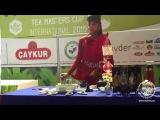 Tea Masters Cup International 2015 Istanbul, Turkey vol.4