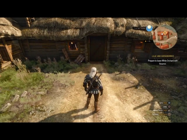 The Witcher 3 - Сплошные раритеты