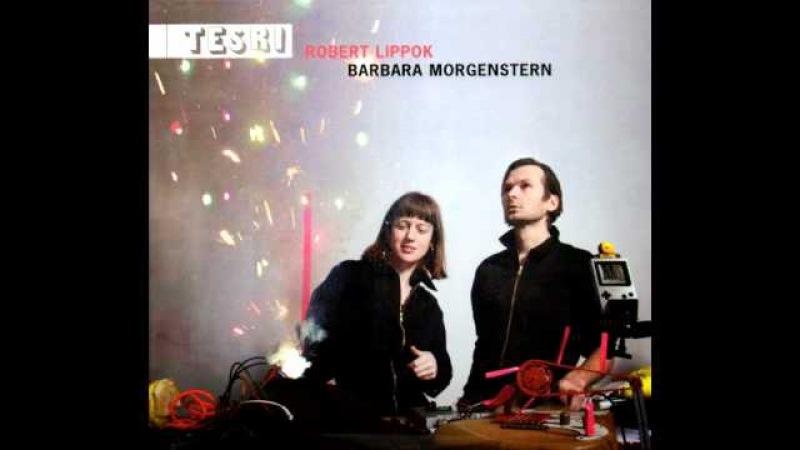 Robert Lippok Barbara Morgenstern - Gammelpop