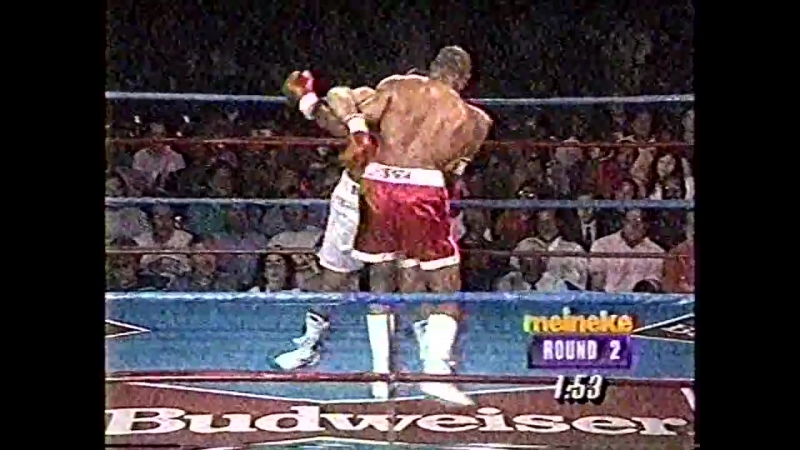 1993-06-01 James «Bonecrusher» Smith vs Donnell Wingfield