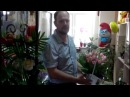 Корзина из розовых тюльпанов от Телефлора - sendflowers.by, teleflora.by