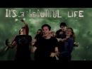 Ace of Base Beautiful Life Lyric Video