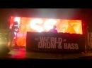 DJ SS (WODB 2015 SPB)