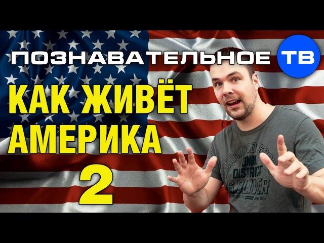 Как живёт Америка 2 (Познавательное ТВ, Тим Кёрби)