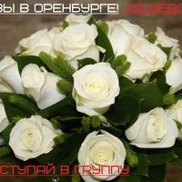 Дешево розы в оренбурге дешево