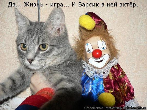 http://cs628220.vk.me/v628220563/25543/alErt3ce3vY.jpg