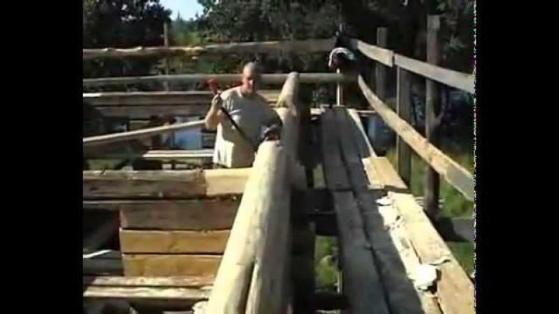 Школа плотника-реставратора: Причерчивание бревна