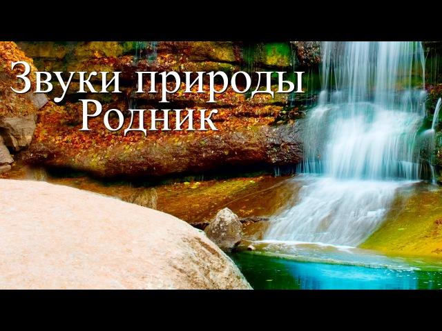 Звуки воды Чистый горный родник Программа для сна и релаксации