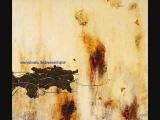 Nine Inch Nails - Piggy