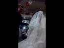 кража невесты часть1