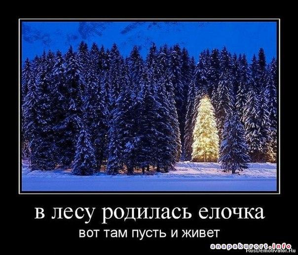 EG-kAqyX1uk.jpg