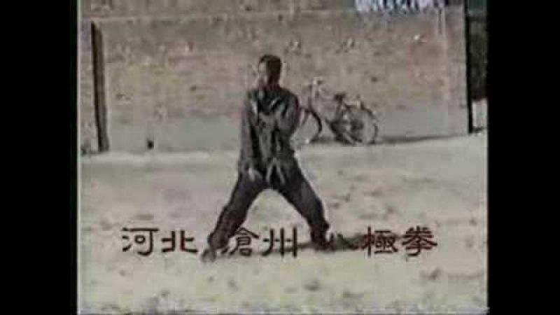 This is Baji Quan