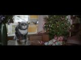 Потрясающая рождественская история
