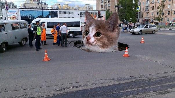Рязань вновь в числе худших городов РФ по качеству дорог