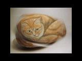 Come dipingere un gatto su sasso