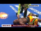 TOP 20 MOST BRUTAL KNOCKOUTS OF 2015 ✰ BOXING HD