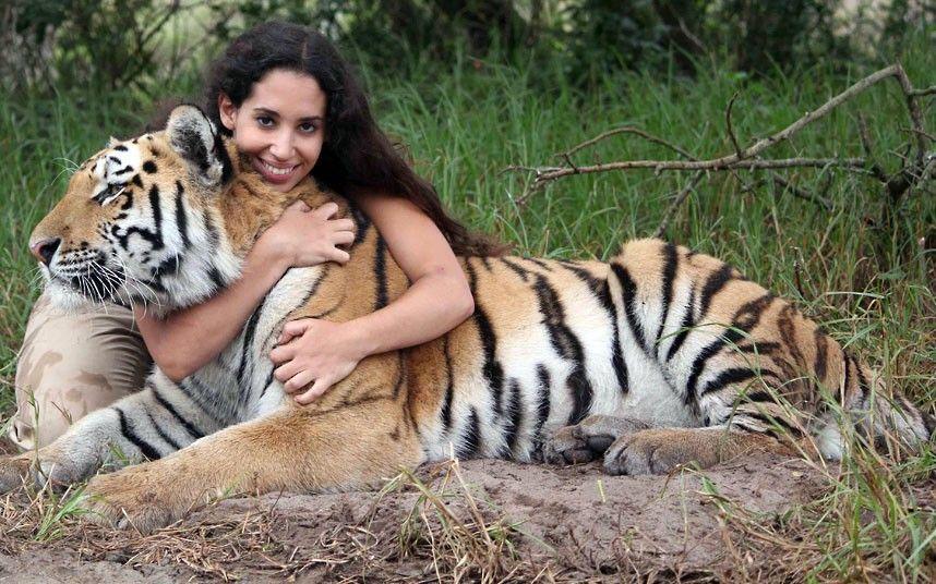 Тигр с человеком