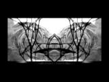 Echonomist - Cinnamon Memento
