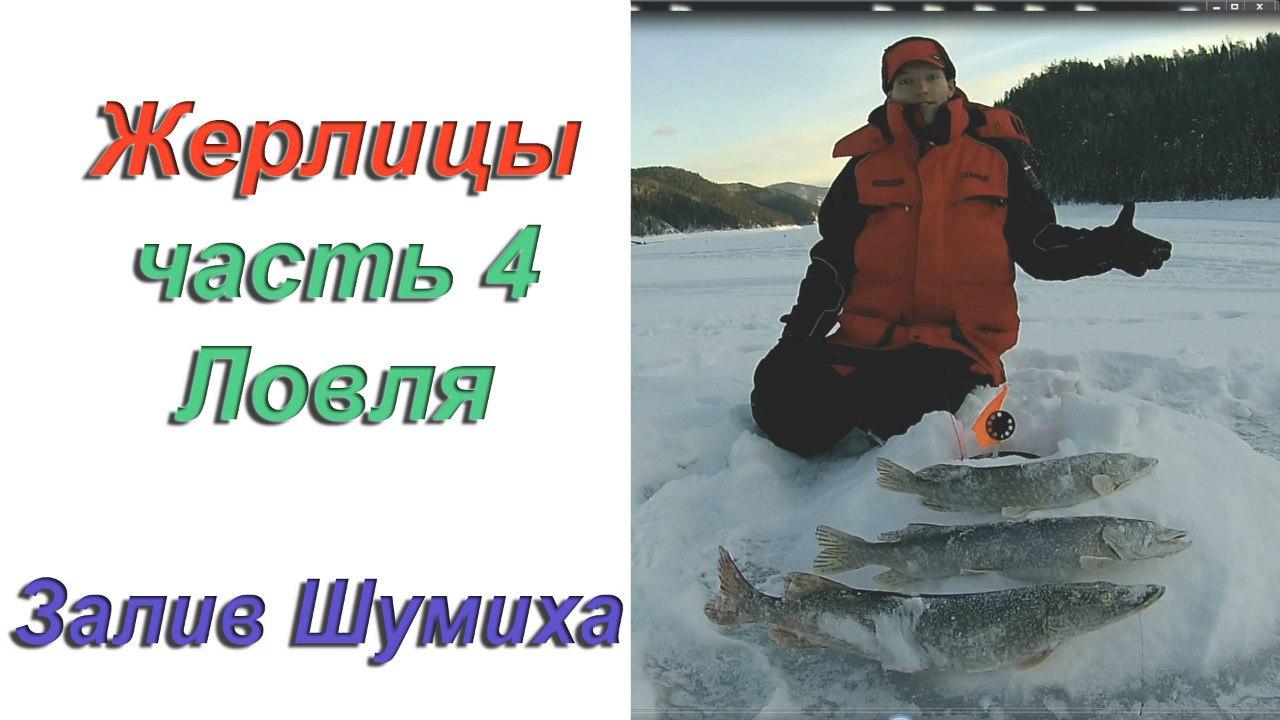 турбазы для рыбалки на заливе