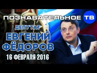 Координатор НОД Евгений Фёдоров  на Познавательном ТВ 16 февраля 2016.