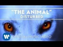 Disturbed - The Animal Official Music Video
