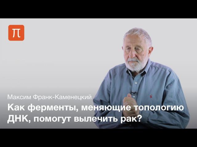 1. Узлы ДНК — Максим Франк-Каменецкий
