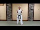 Uechi Ryu Sanchin Kata - Basic Study Guide