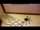 «хеллоуин» под музыку Мерлин Менсон - Это хелуин. Picrolla