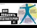 ТЕСТОСТЕРОН Как поднять тестостерон в 10 раз Упражнения и рецепты