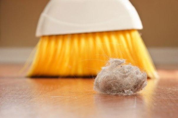 4 способа сократить количество пыли в доме