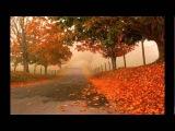 Тихая осень Жанна Бичевская