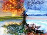 Вивальди (Времена года) Осень Зима Весна Лето
