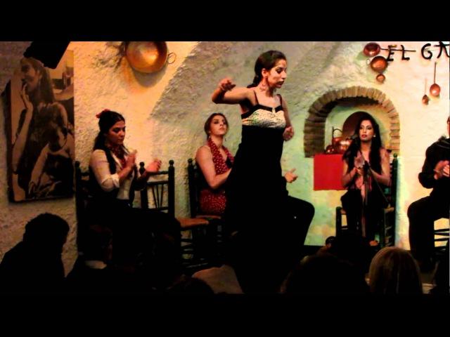 Flamenco en Venta el Gallo Granada