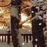 Алёна Савченко: Хочешь такой же ФотоСтатус? Заходи ► vk.com/fotokubiki ◄