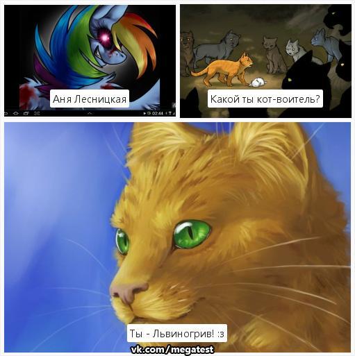 Игры онлайн бесплатно коты воители