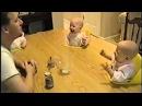 Прикольное видео - папа смешит близнецов