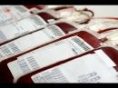 Переливание крови - ужасающая правда, которую надо знать всем!