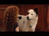 Собака точка ком (Сезон 2 Серия 12)